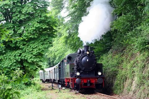 Die Fahrt mit der historischen Eisenbahn garantiert einen erlebnisreichen Ausflugstag.